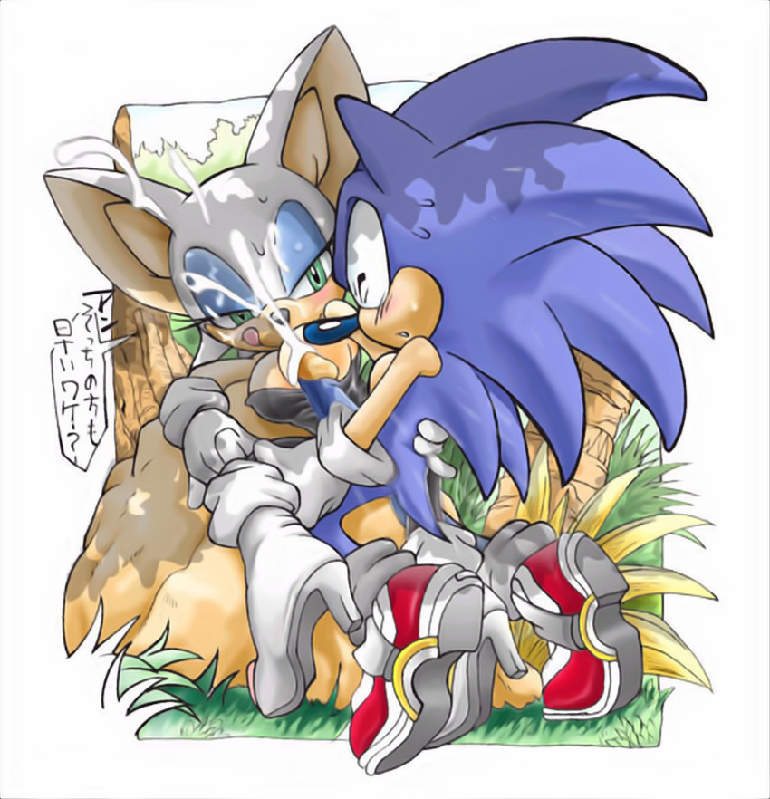 rose & 3 amy sonic Coming out on top all scenes